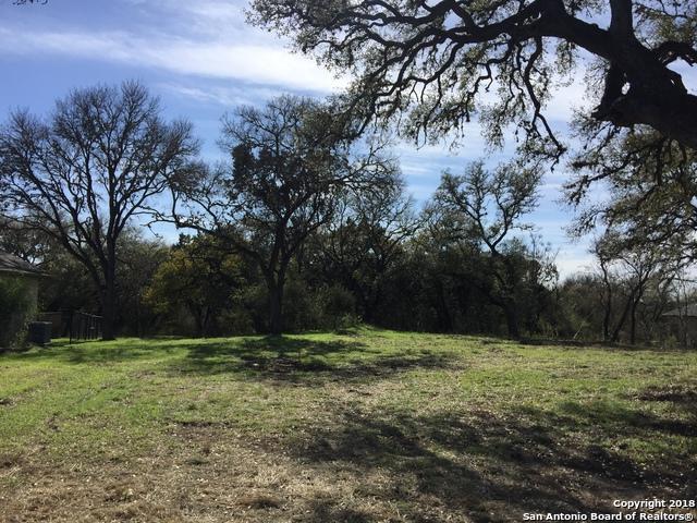 1609 Havenwood Blvd, New Braunfels, TX 78132 (MLS #1309706) :: Magnolia Realty