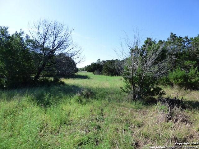 906 Missile Dr, Canyon Lake, TX 78133 (#1309782) :: The Perry Henderson Group at Berkshire Hathaway Texas Realty
