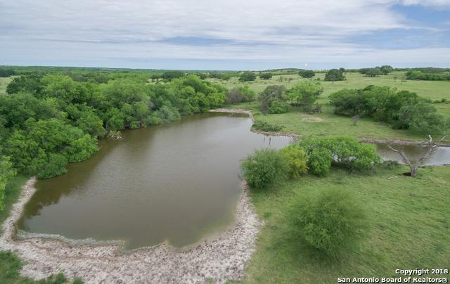 000 Cr 197, Falls City, TX 78118 (MLS #1310057) :: Exquisite Properties, LLC