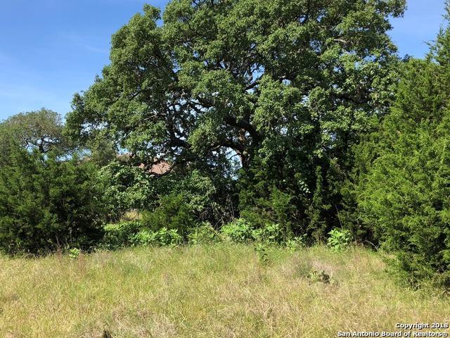 1228 (LOT 543) Acquedotto, New Braunfels, TX 78132 (MLS #1310091) :: Magnolia Realty