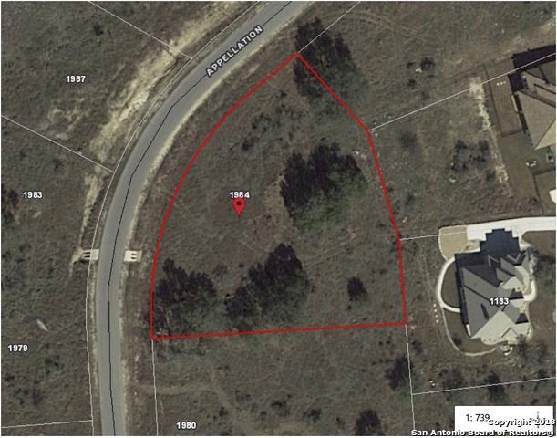 1984 Appellation, New Braunfels, TX 78132 (MLS #1310127) :: Erin Caraway Group