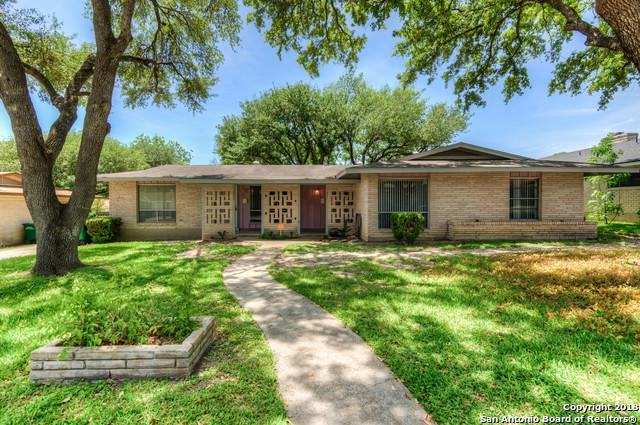 4001 Skylark Ave, San Antonio, TX 78210 (MLS #1310160) :: Erin Caraway Group