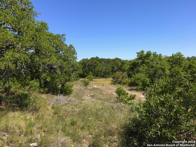26960 Pecan Bluff, Boerne, TX 78006 (MLS #1310393) :: Alexis Weigand Real Estate Group