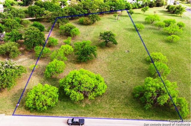LOT 67 Orchard Park, Medina, TX 78055 (MLS #1310395) :: Alexis Weigand Real Estate Group