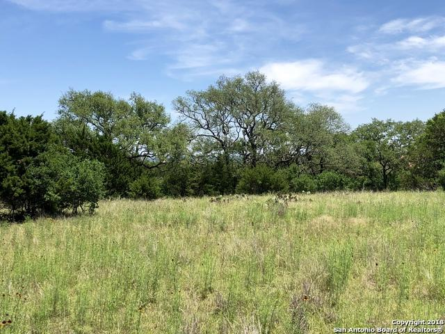 105 Wood Crest, Boerne, TX 78006 (MLS #1310457) :: Erin Caraway Group