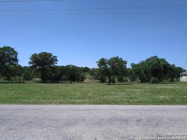 153 Abrego Lake Dr, Floresville, TX 78114 (MLS #1310474) :: Magnolia Realty