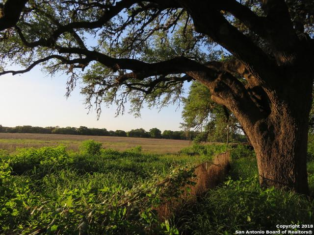 792 Palo Alto Dr, Von Ormy, TX 78073 (MLS #1310932) :: Tami Price Properties Group