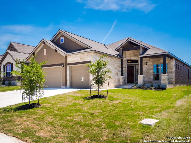 1418 Garden Laurel, New Braunfels, TX 78130 (MLS #1311081) :: Erin Caraway Group