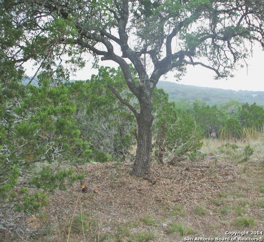2367 (LOT 415) Comal Springs, Canyon Lake, TX 78133 (MLS #1311158) :: Exquisite Properties, LLC