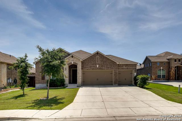 1923 Blue Goose, New Braunfels, TX 78130 (MLS #1311194) :: Erin Caraway Group