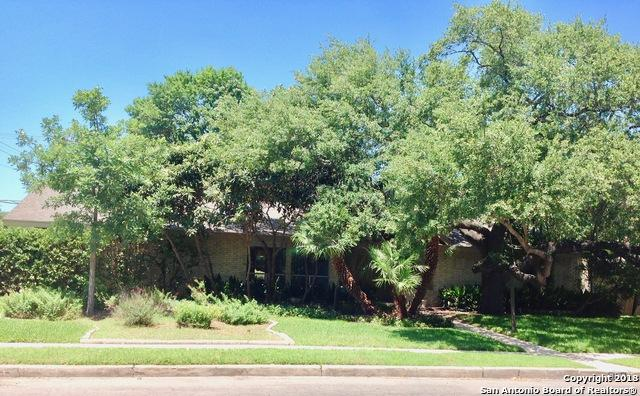 3103 Mindoro Dr, San Antonio, TX 78217 (MLS #1311257) :: Tami Price Properties Group