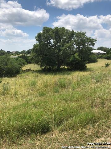 1328 Bordeaux Lane, New Braunfels, TX 78132 (MLS #1311267) :: Magnolia Realty