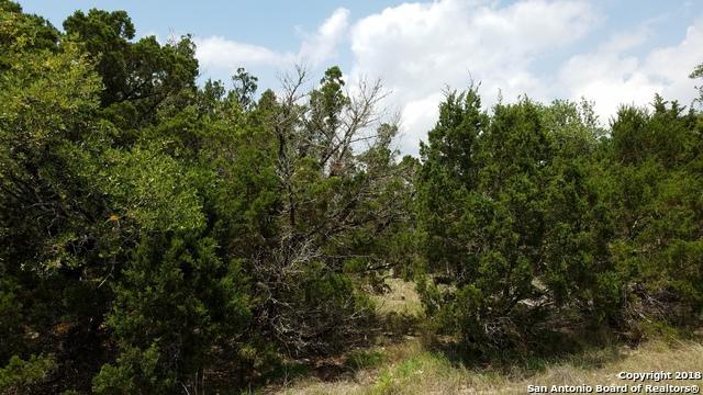 1105 Happy Hollow Dr, New Braunfels, TX 78132 (MLS #1311298) :: Exquisite Properties, LLC
