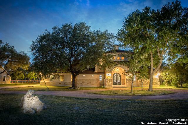 226 Legacy Hills, New Braunfels, TX 78132 (MLS #1311382) :: Erin Caraway Group