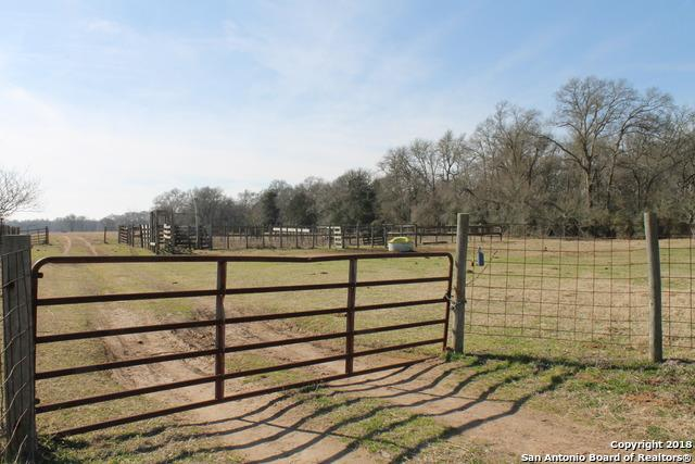 381 Friendship Cemetery Rd, Paige, TX 78659 (MLS #1311642) :: Tami Price Properties Group