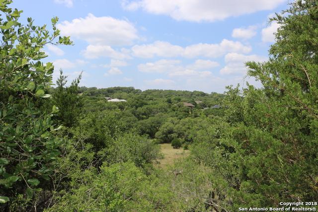 173 Northridge, New Braunfels, TX 78132 (MLS #1311725) :: Erin Caraway Group