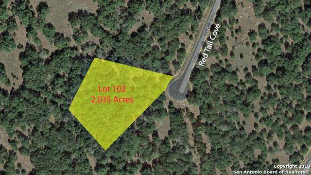 0 (LOT 102) Red Tail Cove, Spring Branch, TX 78070 (MLS #1311729) :: Magnolia Realty