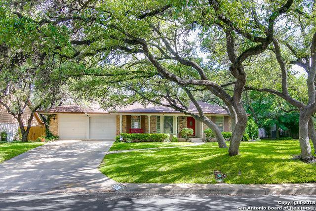 11111 Whispering Wind St, San Antonio, TX 78230 (MLS #1311734) :: Erin Caraway Group
