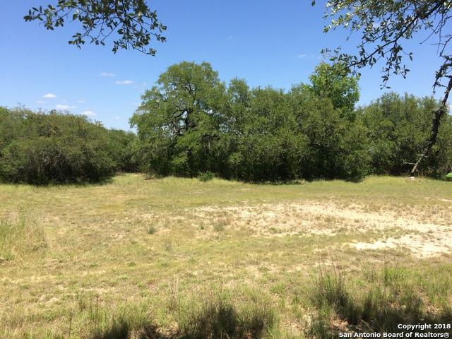 439 Quest Ave, Spring Branch, TX 78070 (MLS #1311737) :: Magnolia Realty