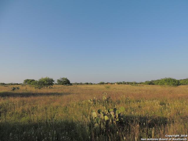 305 Mendiola Ln, Jourdanton, TX 78026 (MLS #1312330) :: Tami Price Properties Group