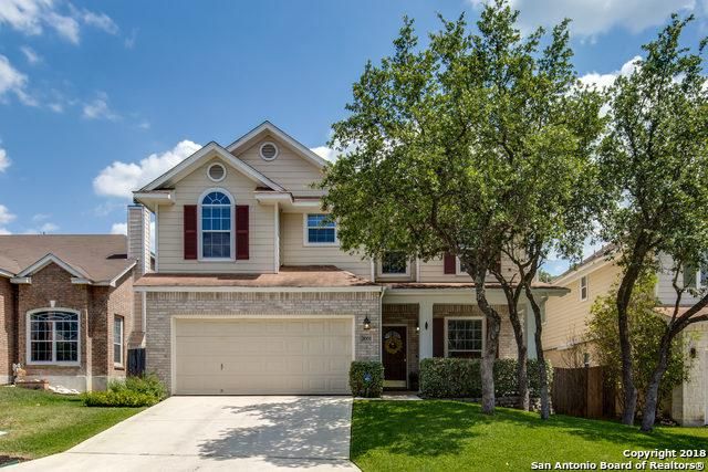 1002 Persian Garden, San Antonio, TX 78260 (MLS #1312396) :: Exquisite Properties, LLC