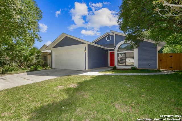 9143 Autumn Storm, San Antonio, TX 78254 (MLS #1312711) :: Magnolia Realty