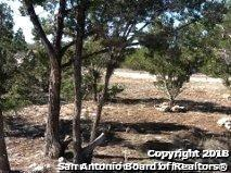 LOT 114 Pr 1509, Bandera, TX 78003 (MLS #1313150) :: Magnolia Realty