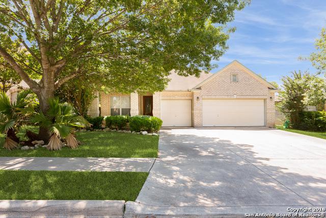 217 Fawn Ridge, Cibolo, TX 78108 (MLS #1313211) :: The Suzanne Kuntz Real Estate Team