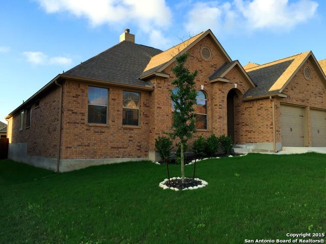 3619 Valencia Peak, San Antonio, TX 78261 (MLS #1313229) :: The Suzanne Kuntz Real Estate Team