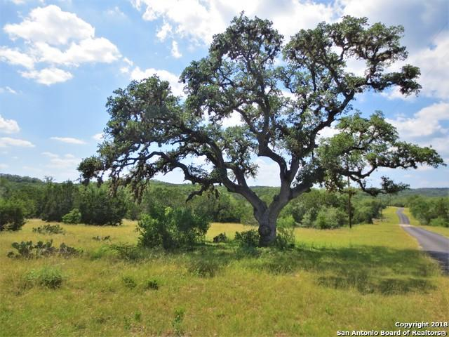 LOT 13 Pr 2535, Mico, TX 78056 (MLS #1313339) :: Alexis Weigand Real Estate Group