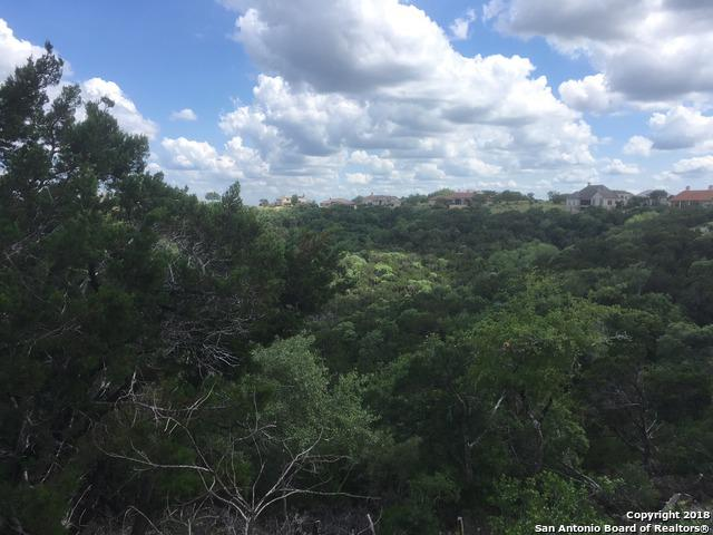 431 Paradise Point Dr, Boerne, TX 78006 (MLS #1313583) :: Neal & Neal Team
