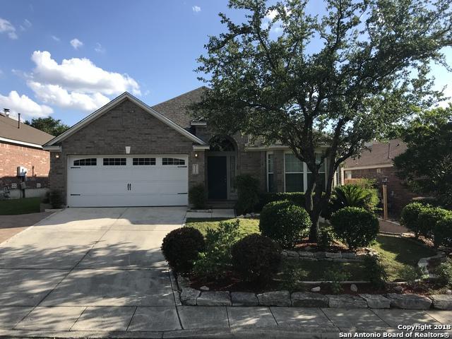 21226 Rio Sabinal, San Antonio, TX 78259 (MLS #1313631) :: Exquisite Properties, LLC