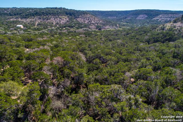 2400 The Low Rd, San Marcos, TX 78666 (MLS #1313771) :: Erin Caraway Group