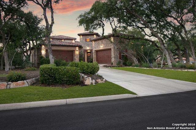 22222 Viajes, San Antonio, TX 78261 (MLS #1313905) :: The Castillo Group