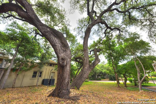 119 Grant Ave, Alamo Heights, TX 78209 (MLS #1313918) :: The Castillo Group