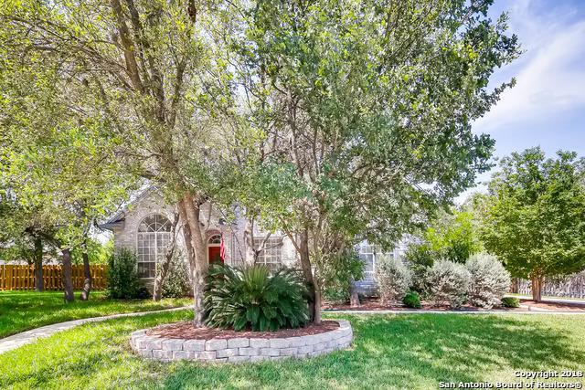 9507 Jason Bend, Helotes, TX 78023 (MLS #1313971) :: Exquisite Properties, LLC