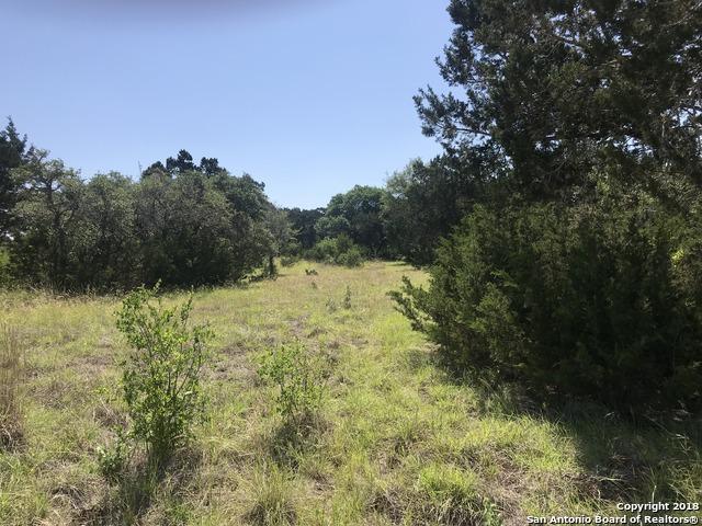 LOT 10 2.04 ACR Rio Circle, Pipe Creek, TX 78063 (MLS #1314253) :: Magnolia Realty