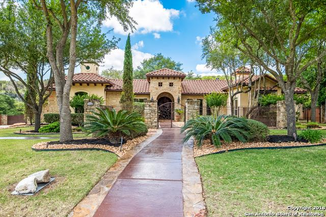 17702 Wild Basin, San Antonio, TX 78258 (MLS #1314272) :: The Castillo Group