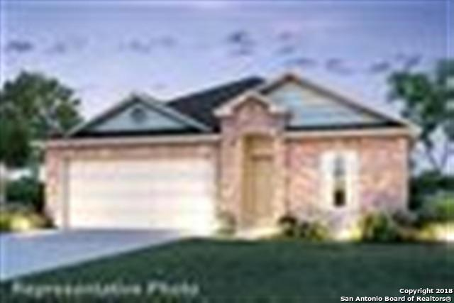 10018 Big Spring Lane, San Antonio, TX 78223 (MLS #1314366) :: The Castillo Group