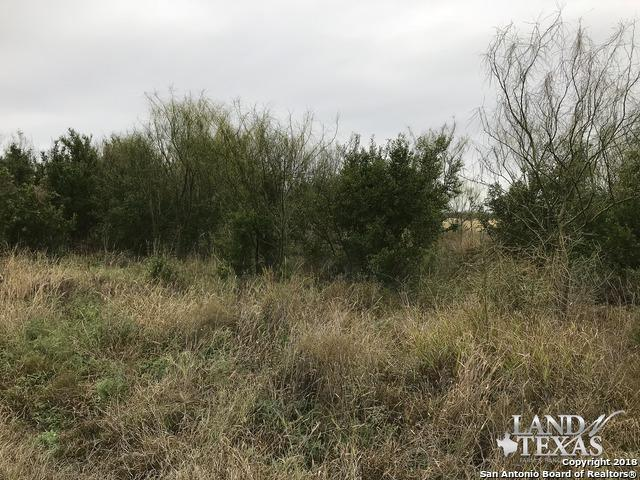 0 W Hwy 83, La Pryor, TX 78872 (MLS #1314548) :: Exquisite Properties, LLC