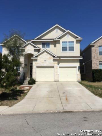 1419 Robin Willow, San Antonio, TX 78260 (MLS #1314673) :: Exquisite Properties, LLC