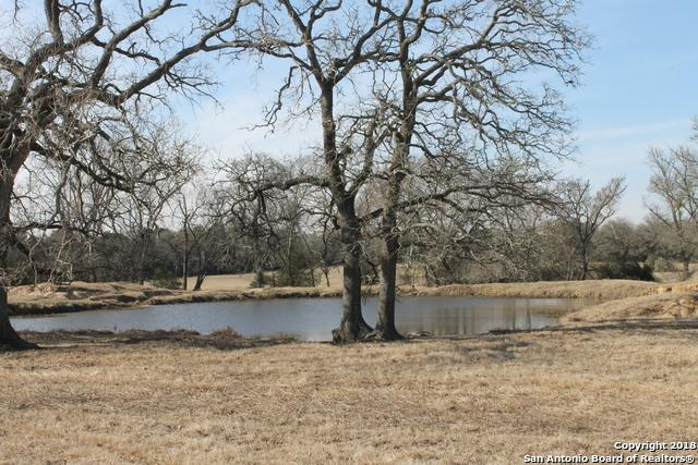 TBD5 Friendship Cemetery Rd., Paige, TX 78659 (MLS #1314863) :: Tami Price Properties Group