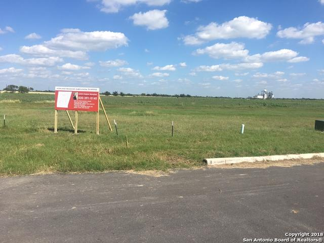 729 Highland St., Poth, TX 78147 (MLS #1314957) :: Alexis Weigand Real Estate Group