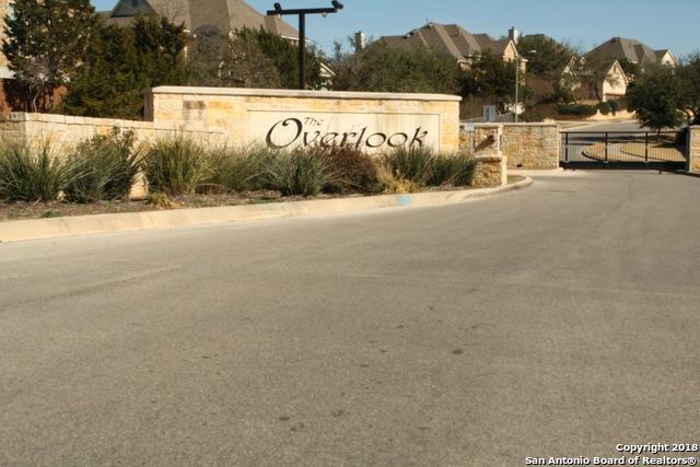 16119 Seekers St, San Antonio, TX 78255 (MLS #1315323) :: Exquisite Properties, LLC