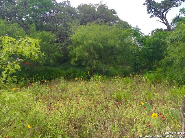 000 Depot, Pleasanton, TX 78064 (MLS #1315393) :: Tom White Group