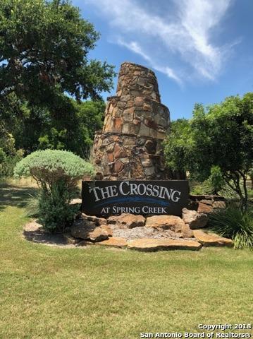 1026 Pegasus Dr, Spring Branch, TX 78070 (MLS #1315962) :: Exquisite Properties, LLC