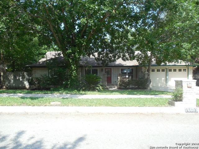16603 Burr Hill St, San Antonio, TX 78247 (MLS #1316119) :: Exquisite Properties, LLC