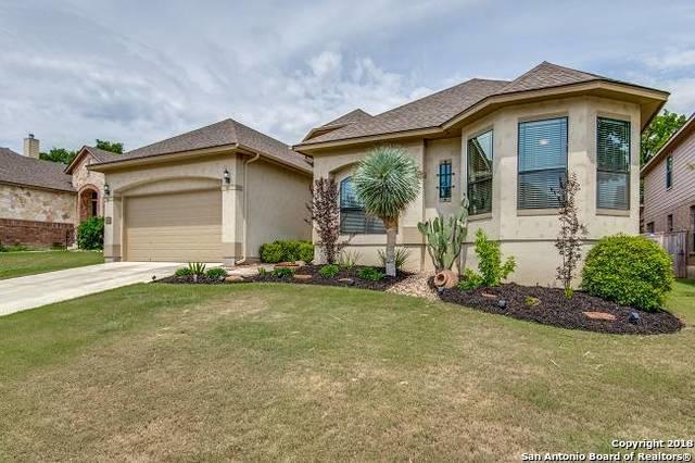25022 Kiowa Creek, San Antonio, TX 78255 (MLS #1316561) :: The Castillo Group