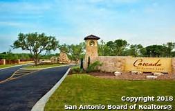 2314 Cascada Pkwy, Spring Branch, TX 78070 (MLS #1316704) :: Berkshire Hathaway HomeServices Don Johnson, REALTORS®