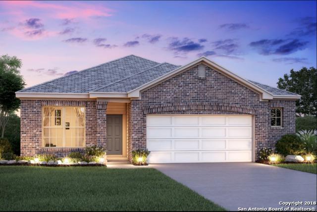 13331 Colorado Parke, San Antonio, TX 78254 (MLS #1316795) :: Exquisite Properties, LLC